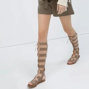 Zara leather greek roman gladiator lace-up sandals